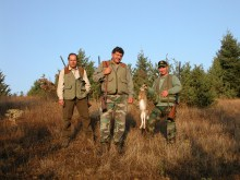 hare-hunting_1